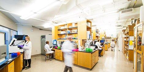 STSI Wet Lab